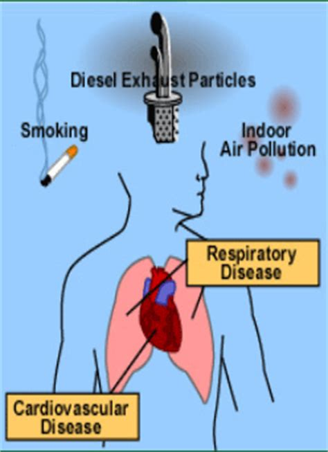 Effects Of Air Pollution In Delhi Essays 1 - 30 Anti Essays